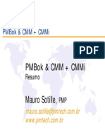 PMBOK&CMM+CMMI