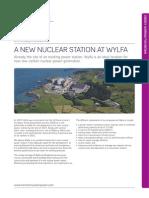 Wylfa Information 2010