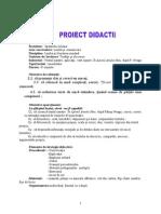 mentoratproiect