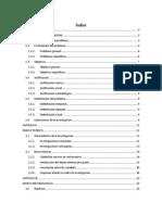 Proyecto de Investigacion 2013. Correlacion IV IFI