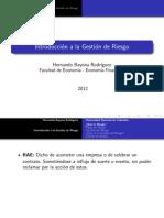 Gestión de Riesgo (1).pdf