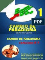 m 1 Paradigmas