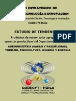 2_ Estudio de Tendencias Sectores Productivos - Huila (Dic_ 2010)
