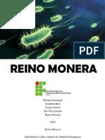 REINO MONERA portfólio.pdf