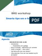 BRG Workshop E-handel 100605