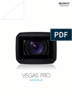 Vegaspro100d Manual Enu