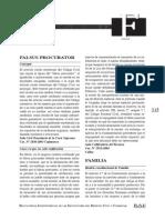 DL Letra Falsus Procurador