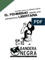 Apuntes Feminismo BN