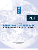 Undp-global Report-reducing Disaster Risk-A Challenge for Developmentrdr_english