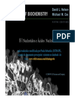 Acidos Nucleicos Final