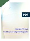 PCA Interpretation