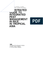 Illustrated Guide to Integrated Pest Management in Rice in Tropical Asia