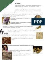 Clasificación de las ciencias sociale1