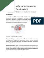 OSTEOPATÍA SACROCRANEAL -SEMINARIO-3