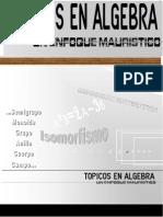 Topicos en Algebra - Un Enfoque Mauristico