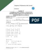 Cap 4 Combiancion Lineal