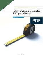8 Calidad SXC Auditorias 20oct2010 Cast