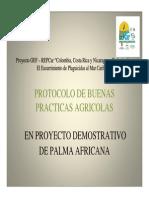 Bicu Cium Presentacion Palma Africana