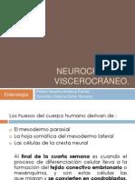 Neurocráneo y viscerocráneo