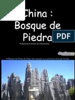 Manuel Mustafa Bosque de Piedras