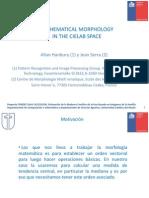Ordenamiento Vectorial Basado en Campoe Electroestaticos-MiguelOyarce