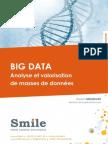 LB_Smile_Big-Data.pdf