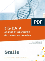 LB_Smile_Big-Data.pdf