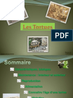 Les Tortues.pdf