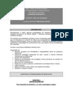 Ed 7_ Relacionamento e Lideranca-possibilidades Discursiva 2 - 2013-2-20131114105801