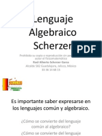 10 Lenguaje Algebraico