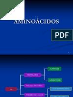 aminoacidos(2)