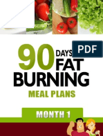90 Days of Fat Burning