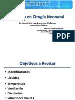 1.Anestesia Neonatal. 2010. Anzorena