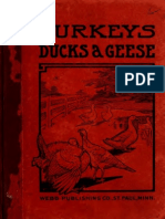 Turkeys, Ducks and Geese