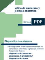Diagnostico+de+Embarazo+y+Semiologia+Obstetrica+(MARCOS) (1)