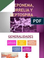 Treponema, Borelia y Leptospira