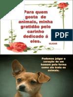 Nosso Amor Aos Animais