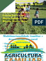 A Multifuncionalidade Da Agricultura Familiar No Brasil Grupo