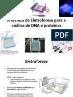 Pcr+Eletroforese