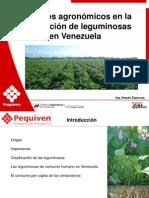 01_Aspectos_agronomicos Produccion de Caraotas