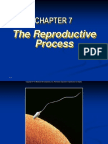Ch 7 Reproduction 10