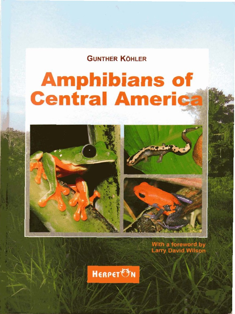 gunter köhler.2010.amphibians of central america | Amphibian | Marsh