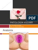 Patología Vulvar  2014
