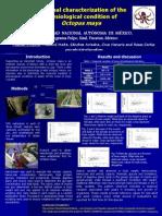 Variacion estacional octopus maya