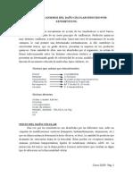 TEMA 15.- MECANISMOS DEL DAÑO CELULAR INDUCIDO POR XENOBIÓTICOS.