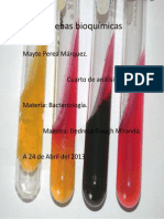 Pruebas bioquímicas mayte