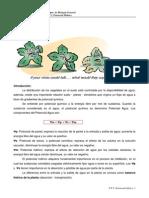 Tp-2 Potencial Hidrico