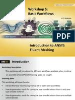 Fluent Meshing 14.5 WS5 Basic Workflows