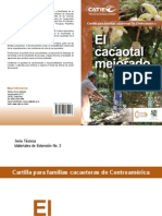 El Cacaotal Mejorado_CATIE