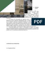 2. Revisao de Literatura (3)